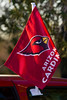 Cardinal Flag-2009-02-06-0001