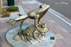 Frog-AZ-Mesa-2005-07-24-0001