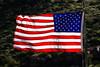 Flag, USA-2010-03-28-0001