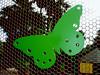 Butterfly-AZ-Phoenix-Zoo-2004-10-17-0001