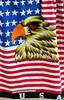 V-Flag-2005-04-09-0002