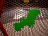Batting Cage-2004-10-17-0001