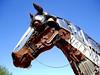 Horse-2004-08-29-0004<br /> Located in Fountain Hill, AZ.