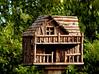 Bird House-2003-08-01-0001