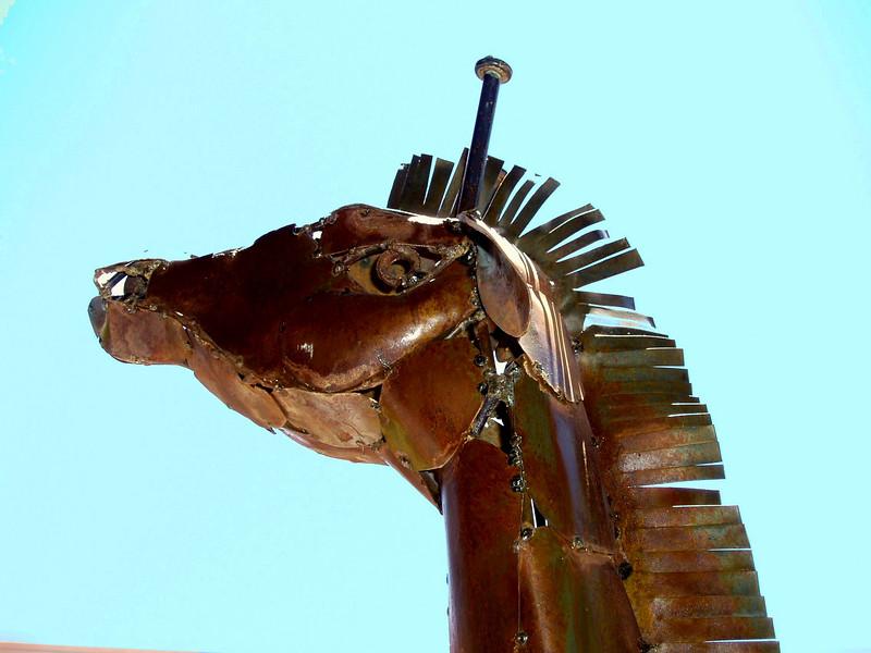 Horse-2004-05-16-0001