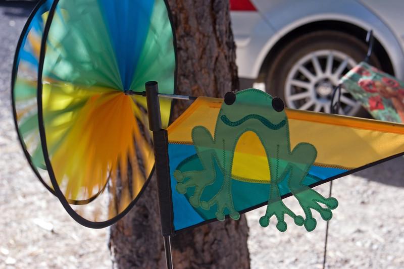 Frog-CA-Hat Creek-Area-2006-09-03-0001