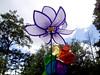 Wind Vein-2004-08-29-0001