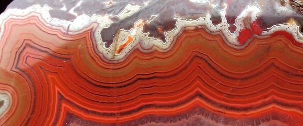Dryhead agate close-up.