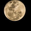 Full Moon 26 Dec 2015