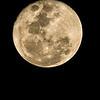 Full Moon 26 Dec 2015