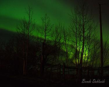 DSC_4315 Northern Lights Mar 2015