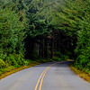 The Road from Cape Blanco Lighthouse - Vertical