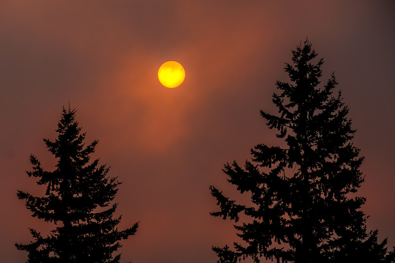 Wildfire Sunrise: Everett, WA