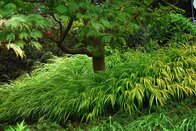 Inniswood Gardens