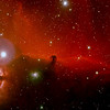 The Horsehead Nebula (also known as Barnard 33 in bright nebula IC 434) is a dark nebula in the constellation Orion. The nebula is located just below Alnitak, the star furthest left on Orion's Belt, and is part of the much larger Orion Molecular Cloud Complex. It is approximately 1500 light years from Earth. It is one of the most identifiable nebulae because of the shape of its swirling cloud of dark dust and gases, which is similar to that of a horse's head.<br /> ***********************************************************************************************************<br /> Captured using:<br /> Camera: OSC QHY8 as main and QHY5 as guide<br /> Filters: Ha 7nm, Moon&Skyglow+Fringe Killer<br /> Scope: WO FLT-110 f/7 and SW 80mm as guide<br /> Mount: HEQ5 Pro<br /> SUBs: Ha=12x15min, RGB=6x30min<br /> Processed using ImagesPlus v3.75 (Ha was used as luminance)