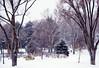 Elko in Winter