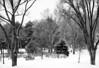 Elko in Winter BW