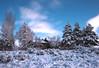 Casa di Inverno
