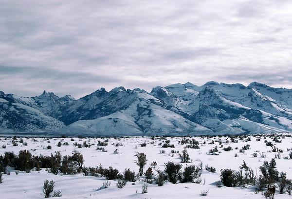 Rubis no Inverno