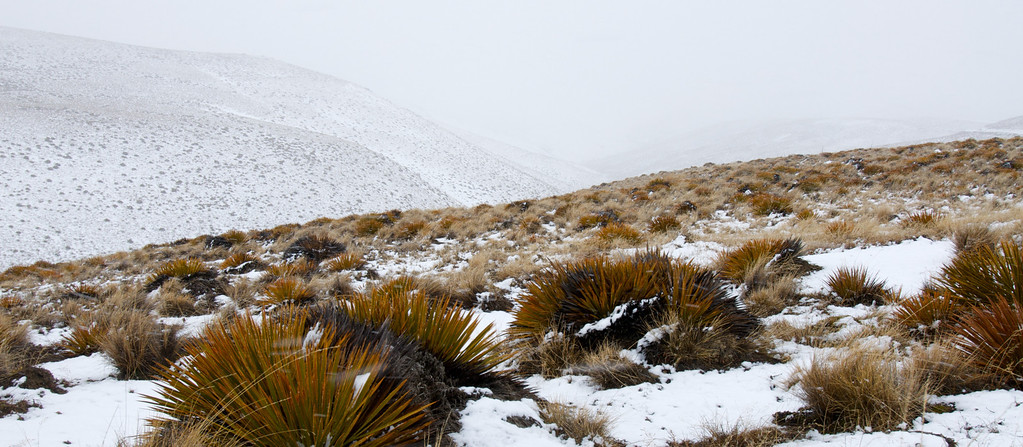 A harsh environment but the valley seems almost appealing in this bleak landscape with spiny plants!