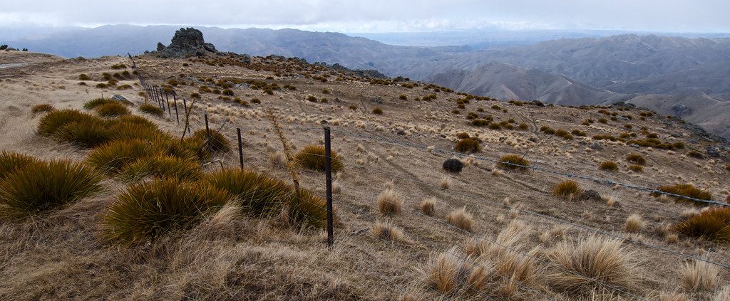 Going into an unknown place - ascending the Carrick Range from Bannockburn