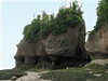 Hopewell Rocks, Bay of Fundy, N.B.