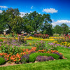 Beautiful Gardens in Washington Park in Denver Colorado 2