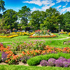 Beautiful Gardens in Washington Park in Denver Colorado