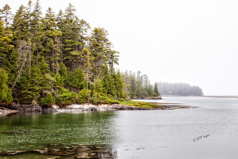 Schoodic Point in Maine