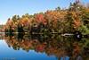 Vermont Foliage - Vermont, USA