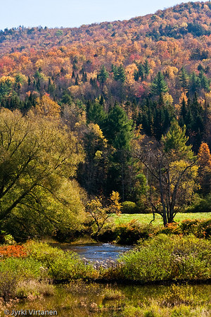 New England Foliage IV - Vermont, USA