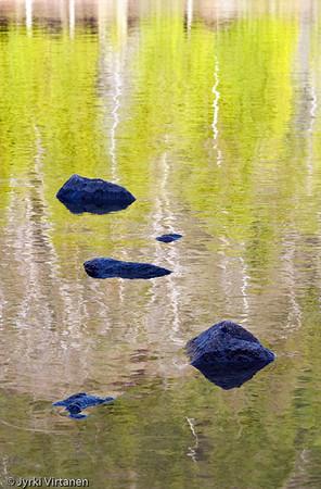 Green Reflection - Acadia National Park, ME, USA