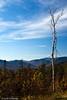Kangamangus Highway Colors III - New Hampshire, USA