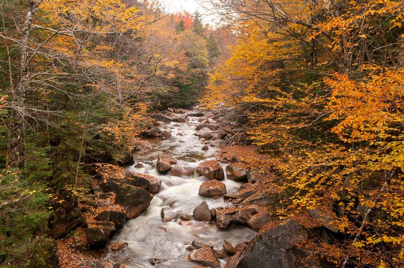 Pemigewasset River 1