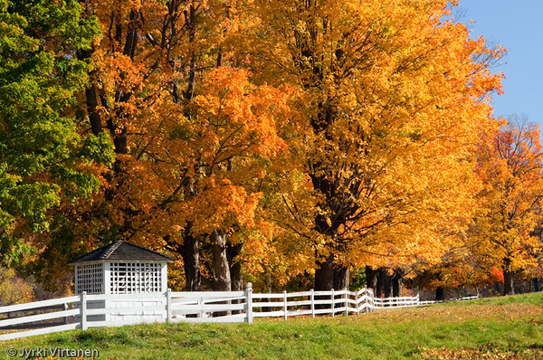 White Fence - Connecticut, USA