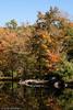 Vermont Foliage II - Vermont, USA