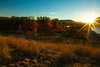 Morning sun over the Snake River in Grand Teton National Park..<br /> Photo © Cindy Clark