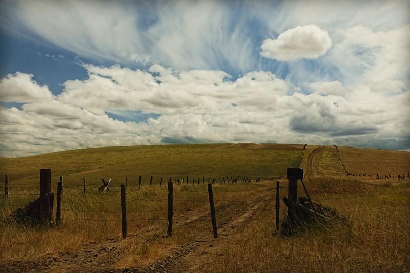 along highway 74 in eastern Oregon.<br /> © Cindy Clark