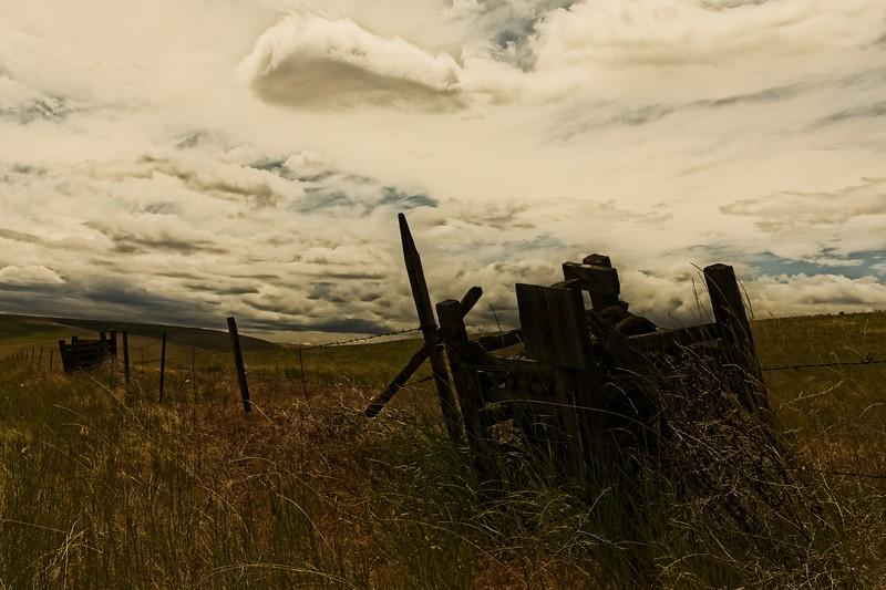 Along highway 206 in eastern Oregon.<br /> © Cindy Clark