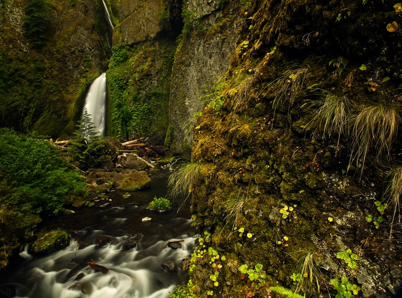 First real hike of 2021. This is Wahclella Falls in the Columbia Gorge.<br /> © Cindy Clark