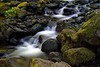 Motion and stillness. Starvation Falls in the Columbia Gorge in Oregon.<br /> Photo © Carl Clark
