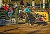 Airborne!  Excitement at Guymon Pioneer Days rodeo.<br /> Photo © Cindy Clark