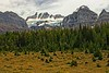 Mt Fay and Mt Bowlen stand out above Larch Valley in the Canadian Rockies.<br /> Photo © Carl Clark