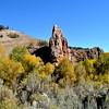 Fall Foilage in Colorado 9