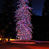 Christmas Tree in Vail Colorado 2
