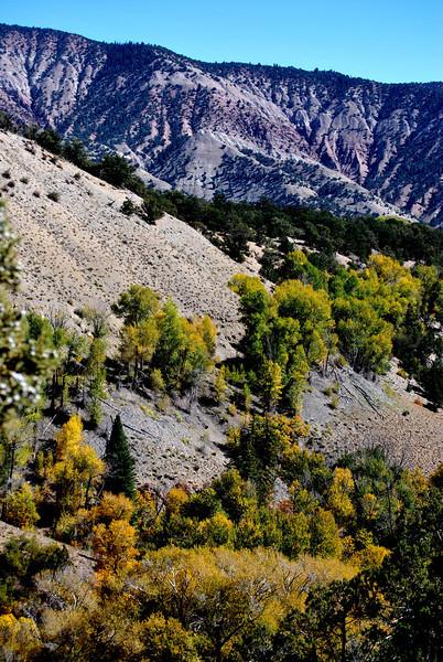 Colorado Scenery in the Fall Season 2