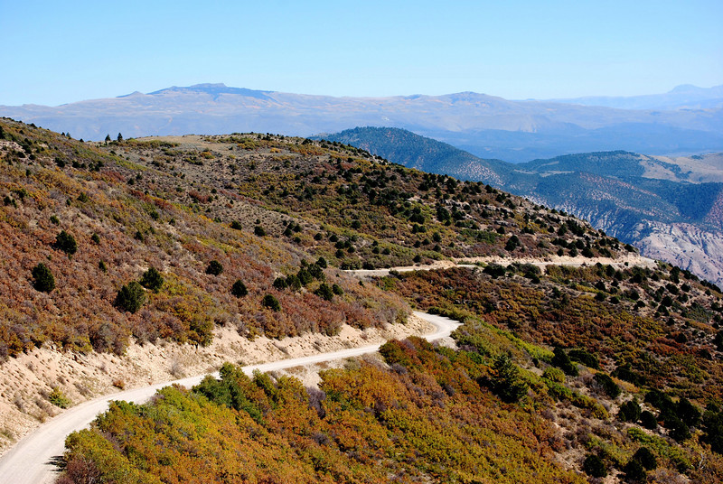 Switchbacks on Coffee Pot Road in Colorado