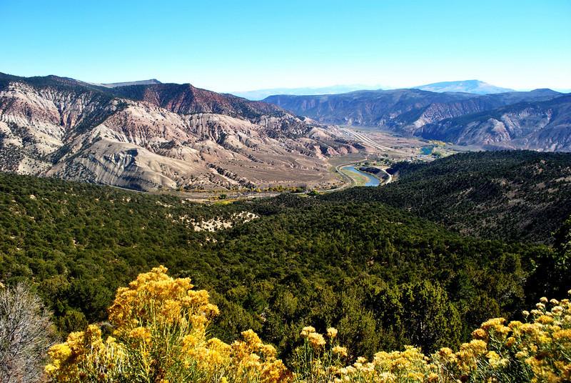 Fall Foilage in Colorado 3
