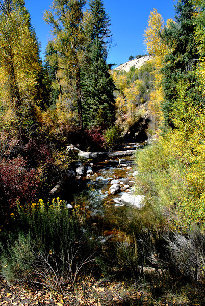 Small Creek near Glenwood Springs Colorado