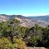 Fall Foilage in Colorado 4